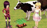 3D Çiftlik İşletme