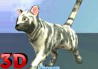 3D Kedi Yarışı