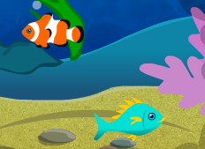 Akvaryumda Balık Besleme - Geliştirmeli