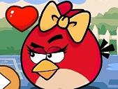 Aşık Angry Birds ile Yuvarlan