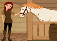 At Bakıcısı Ol