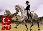 At Etkinliği 3 - Türkçe 3D