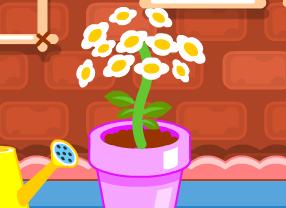 Çiçek Besleme