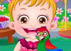 Hazel Bebek Papağan Bakımı