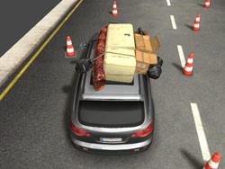 Hızlı Sürücü 3D
