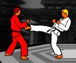 Judo Müsabakası