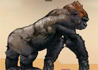 Katil Goril