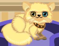 Kedi Bakıcısı