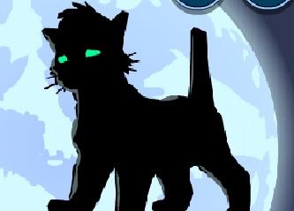 Kedi Dövüşleri (Geliştirmeli)