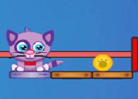 Kediyi Besle
