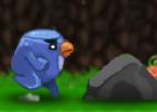 Koşucu Kuş
