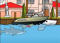 Miami Köpekbalığı