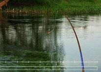 Nehirde Balık Tutma
