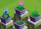 Orkide Bahçesi İşletme