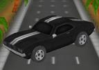 Otoban Şoförü 3D - Geliştirmeli
