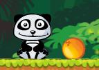 Panda ve Portakalları