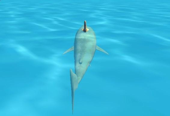 Sahildeki Köpekbalığı