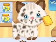 Sevimli Hayvan Bakımı 2