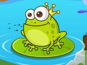Sevimli Kurbağa Bakımı
