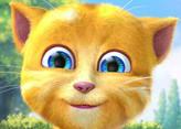 Konuşan Kedi 2 - Talking Ginger 2
