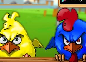 Tavuk Kümesi 2