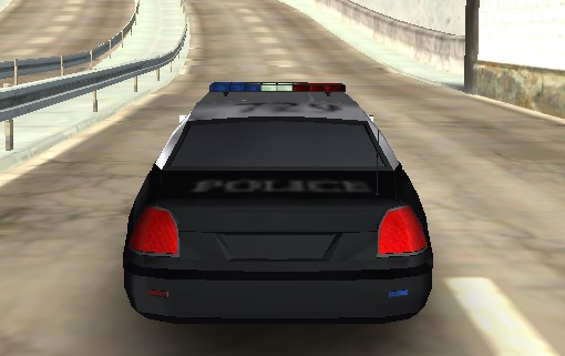 Hırsız Polis